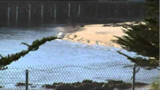 Tsunami - Water Receding At Wharf In Monterey CA 3-11-2011
