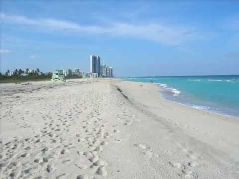Consider, that Miami haulover beach florida