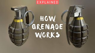 How Grenade Works? Time-Delay Grenade & Impact Grenades | Types Of Grenades - Explained (Hindi)