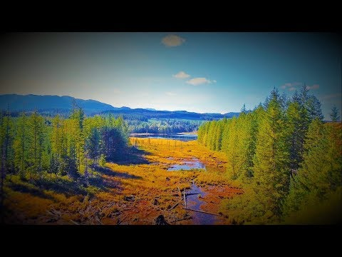 Campbell River's Hidden Secret (the Quinsam River) Watch In HD