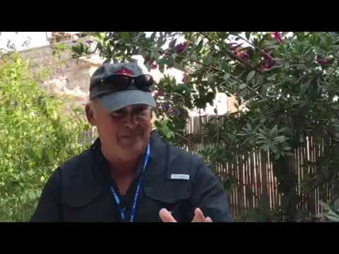 Correll Israel Trip 2018 -  The Garden Tomb Part 1