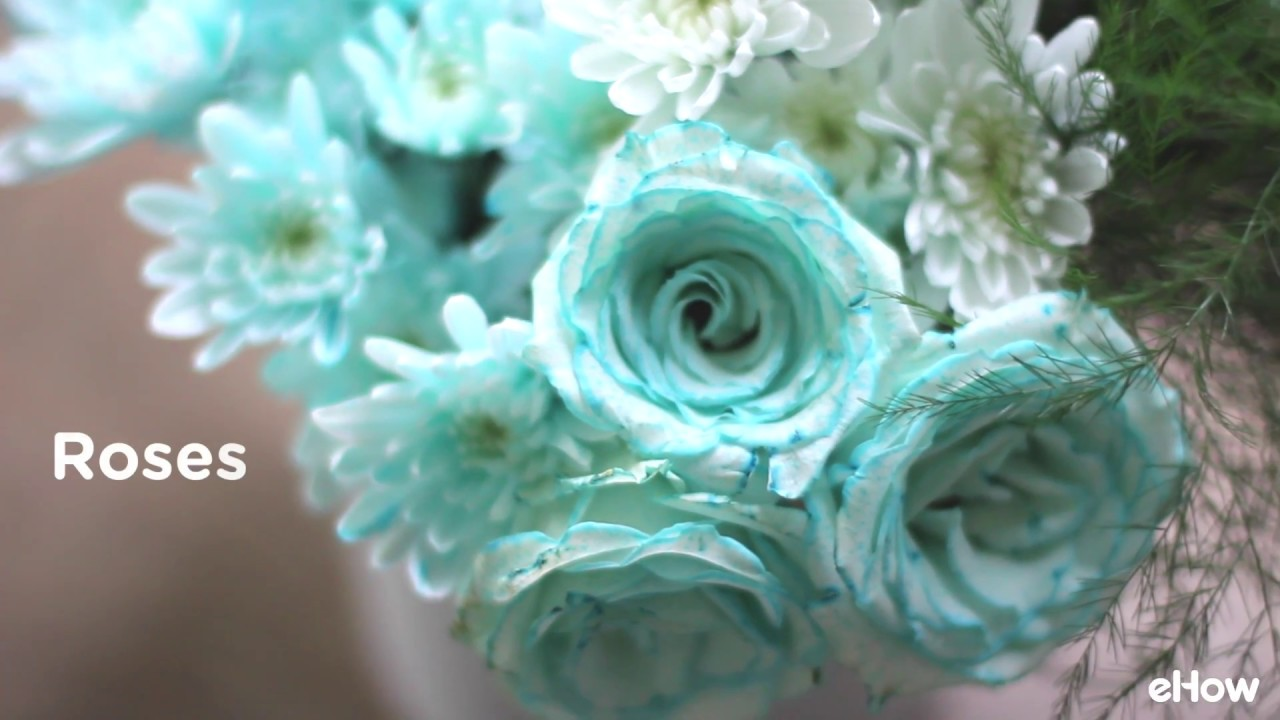 How to Dye Flowers Any Color You Want   YouTube How to Dye Flowers Any Color You Want