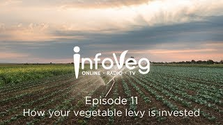 InfoVeg TV Episode 11 | How your vegetable levy is invested