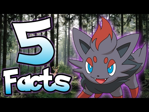 5 Facts About Zorua That You Probably Didn't Know! | Pokemon Facts