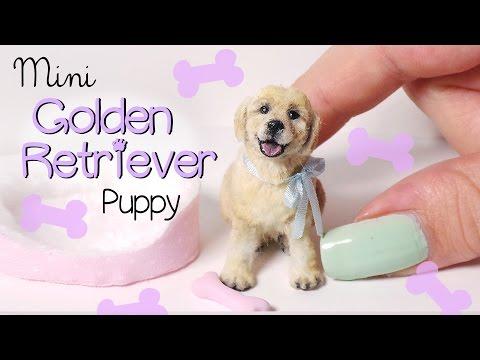 Miniature Golden Retriever Puppy Tutorial // Dolls/Dollhouse DIY