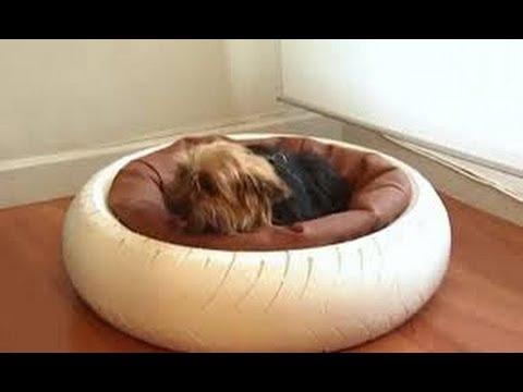 Como hacer camas para perros y gatos 5 youtube - Como hacer una cama para perro ...