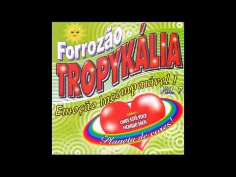 FORROZAO BAIXAR CD TROPYKALIA PLANETA DE CORES