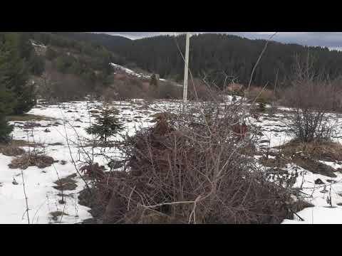 Land for sale Ilijas Nisici near Sarajevo