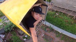 NTN - Thử Làm Nhà Trên Không (Make a house in the overhead)