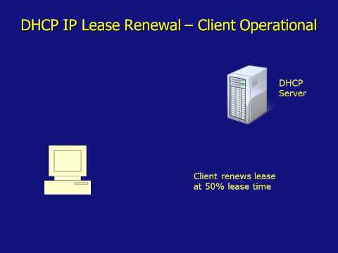 DHCP IP Acquisition, IP Lease Renewal and DHCP Fault Tolerant Network