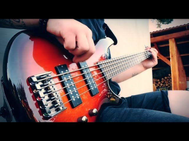 SILENT GENERATION - Violence is the Cure (BASS PLAYTHROUGH)