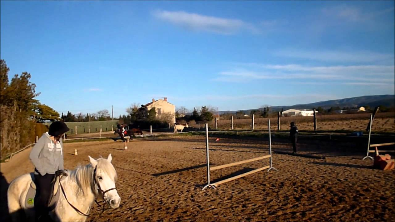 Saut d 39 obstacle galop 3 youtube - Frison saut d obstacle ...