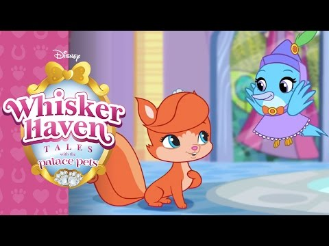 Welcome to Whisker Haven | Whisker Haven Tales with the Palace Pets | Disney Junior