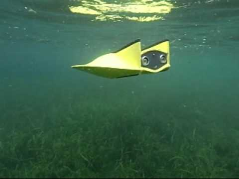 Underwater Video RC Submarine - My Flying Sub