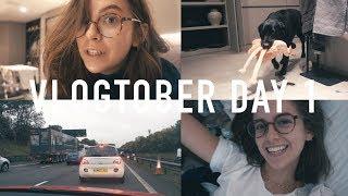 VLOGTOBER 2017 DAY 1: The Hangover | sunbeamsjess