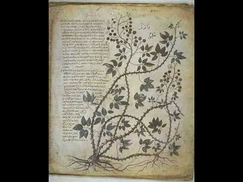Byzantine Secular Music-The Nightingale Kratima