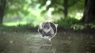 MemerCat Channel Theme Song [Request]