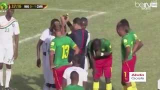 اهداف مباراة الكاميرون والنيجر كاملة