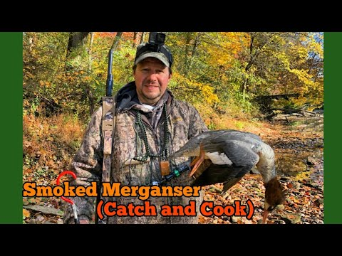 Smoked Merganser (Catch And Cook)