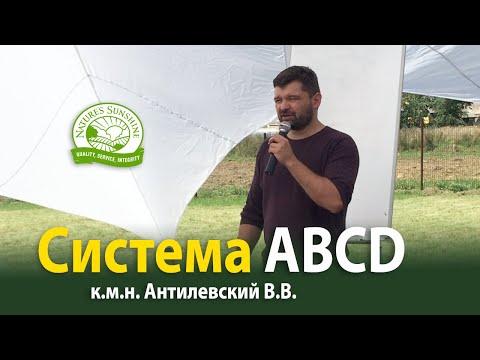 Система ABCD - Антилевский В.В.