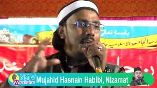 Mujahid Hasnain Habibi:Madarsa Aljametul Islamia Jamia Nagar Majhia,Kishanganj