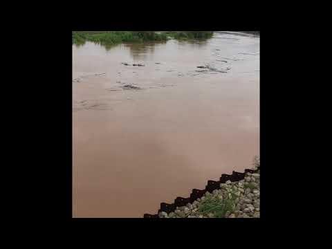 HOUSTON FLOOD UPDATE! BRAZOS RIVER EVACUATION OVERFLOW!
