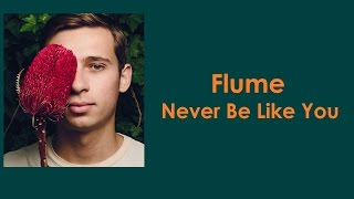 FLUME - Never Be Like You LYRICS