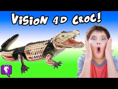 CROCODILE 4D! HobbyPig Builds a Crocodile Guts n'Bones + Animal Planet Surprise HobbyKidsTV