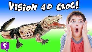 CROCODILE 4D! HobbyPig Builds a Crocodile Guts n