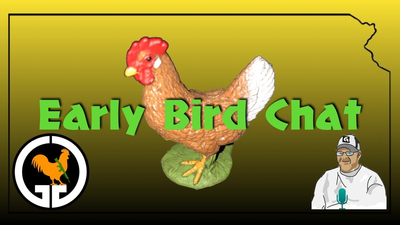Early Bird Chat #33