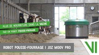Plus de nourriture dans la vache par un robot pousse fourage