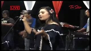 STEL KENDO#Bojo Galak#Jaran Goyang TONY'S ELECTONE TERBARU 2017