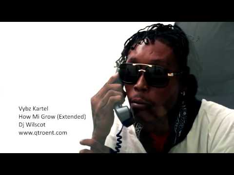 Vybz Kartel - How Mi Grow (Extended) [2016]