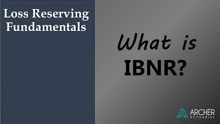 What is IBNR?