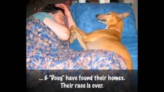The Race - GPA CNHC thumbnail