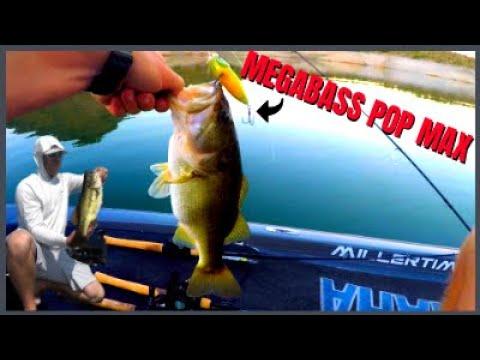 Fishing Lake Pleasant Arizona (Megabass)