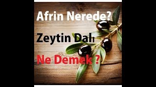 (90 Saniyede)Afrin Nerede, Zeytin Dalı Ne Demek ?