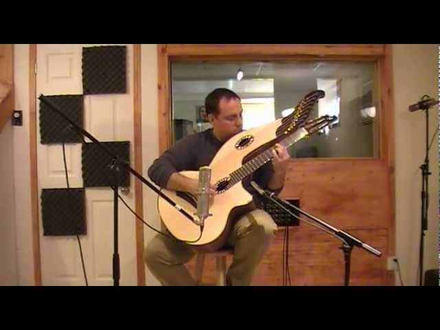 Pour Claude (Beardsell HG1 harpguitar)