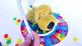 Nursery Rhymes Johnny Johnny Kids Songs Dog Bath Color Learning Video Jazz and Jr