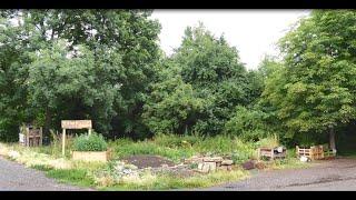 Wildwuchs-Garten Gotha