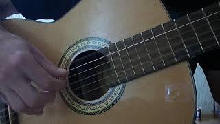 Чёрное и белое (гитара)