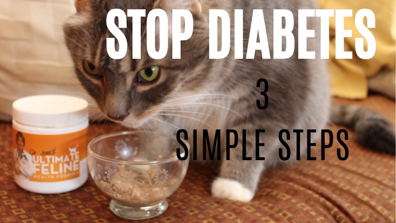 Diabetes No More? Stop Insulin With These Simple Steps