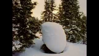Lame-snowboard video