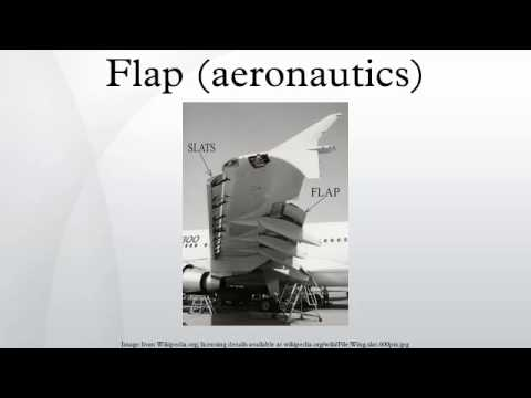 Flap (aeronautics)
