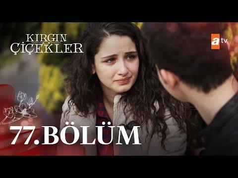 Обиженные цветы турецкий сериал на русском языке 77 серия