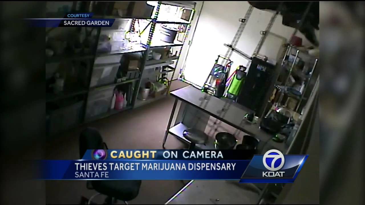 Men Enter Through Skylight In Weed Dispensary Theft видео
