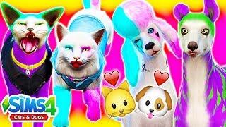 🐱🐶HARLEY QUINN & JOKER CATS & DOGS HAVE CHILDREN🐱🐶 Sims 4 Cats & Dogs Random Genetics Challenge!