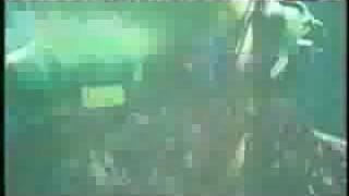 Storm - Storm Animal (Live)
