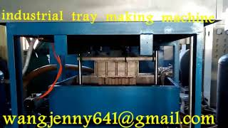 industrial tray packing machinery suppliers