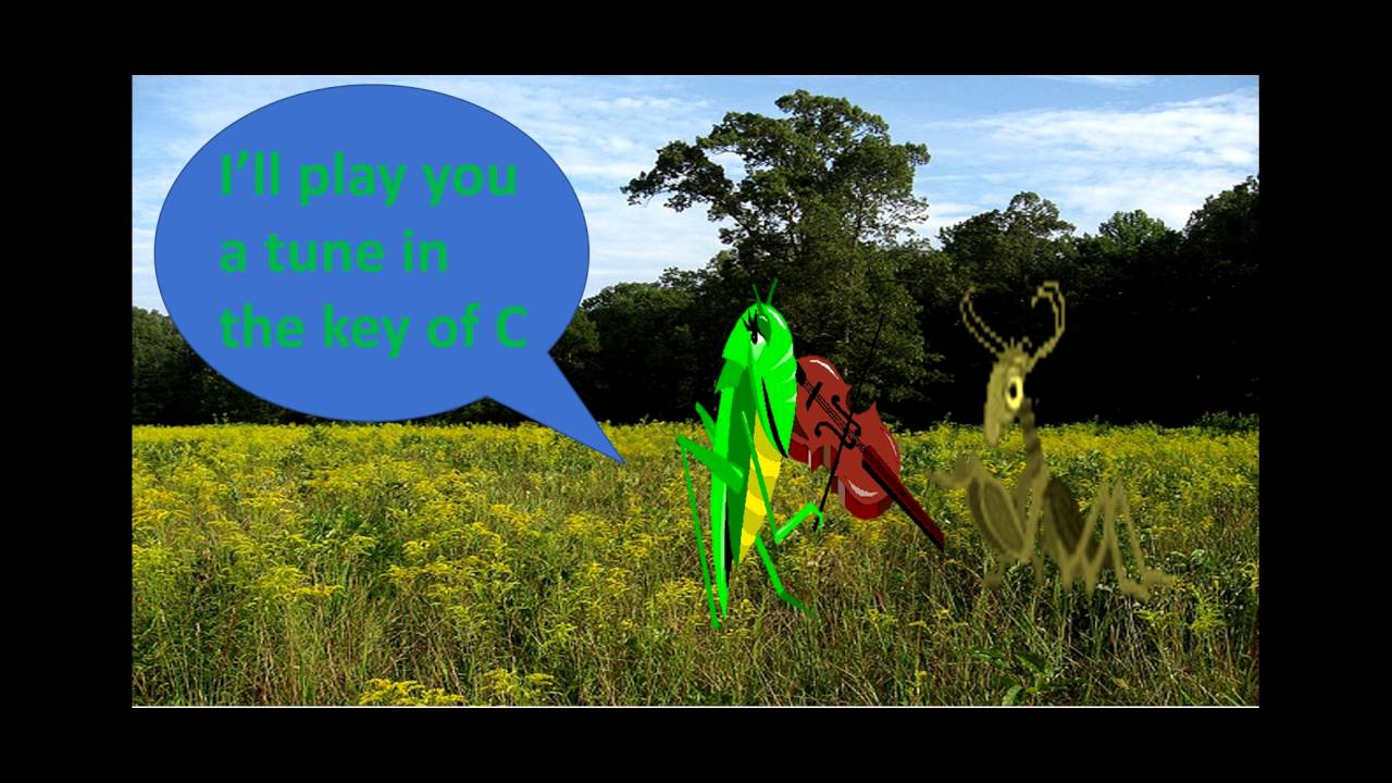 FUN FACTS ABOUT GRASSHOPPERS -- Grasshoppers' Love Song!!! - YouTube